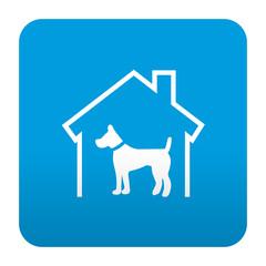 Etiqueta tipo app azul simbolo residencia canina
