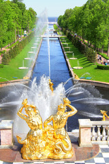 The Sea Channel in Peterhof Palace