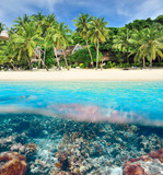 Beach with coral reef underwater view