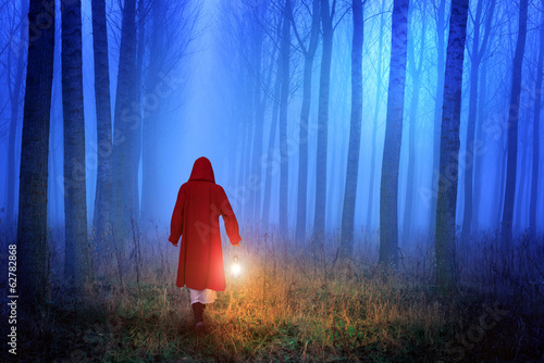 Little Red Riding Hood in the forest