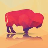 Fototapety Geometric polygonal buffalo, pattern design, vector illustration