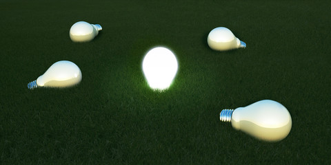 Light bulb in the grass