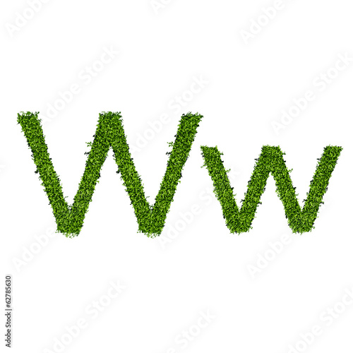 Isolated grass alphabet W