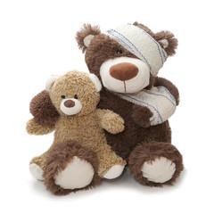 ours blessé soin hospitalier