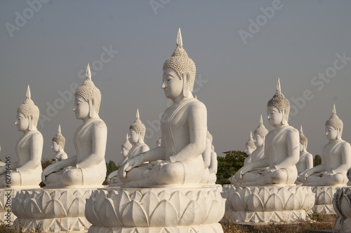 Multiple white Buddha statues in the field