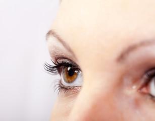 Makroaufnahme Auge einer Frau mit Make up