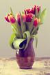Spring Tulip in Vase