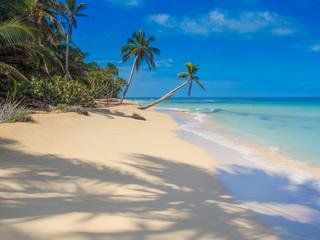 Tropical beach - Spiaggia caraibica