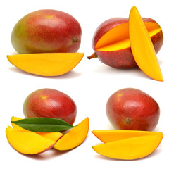 Collection of mango