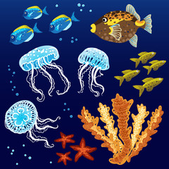 Vector set of tropical fishes, jellyfishes and corals.