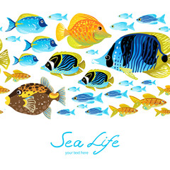 Horizontal seamless sea border. Colorful tropical fish