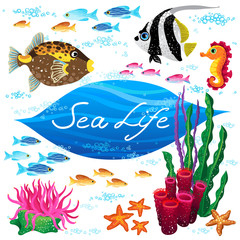 Vector set of sea animals and seaweeds.