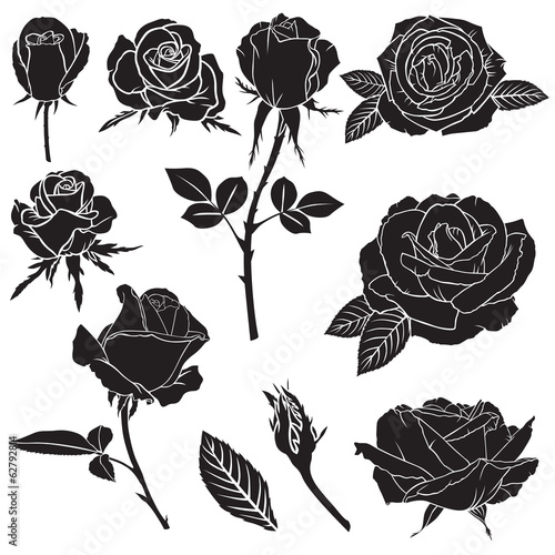 Silhouette lush rose flowers set
