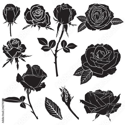 Sylwetka bujne kwiaty róży zestaw