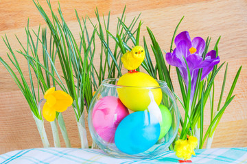 Easter composition with crocuses and colored eggs