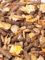natural sportive  muesli background. for horse.