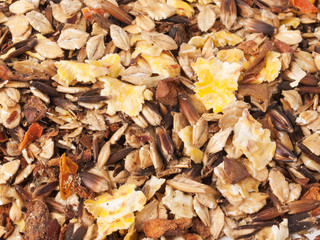 sportive  muesli background. for horse.