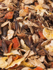 sportive  muesli with black oats. background. for horse.