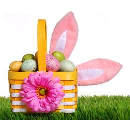 Easter basket with colorful eggs and bunny ears on grass