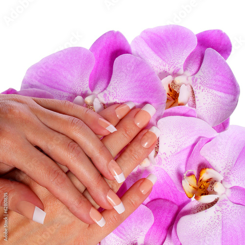 French Manicure. Beautiful Female Hands
