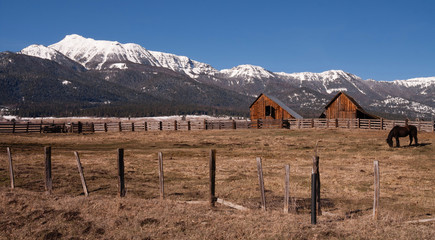 Old Horse Barn Endures Mountain Winter Wallowa Whitman National