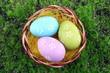 Easter eggs in nest on green grass background