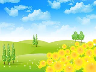 ひまわり 空 風景