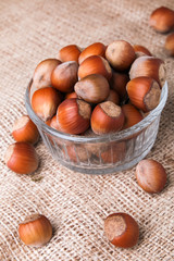 Hazelnuts close-up