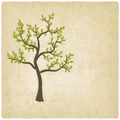 tree old background - vector illustration