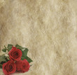Roses on rustic parchment background