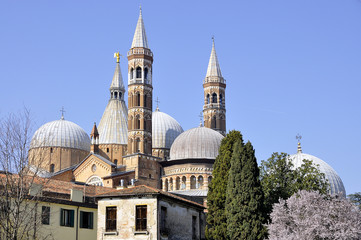 Rear view of Saint Anthony basilica in Padua