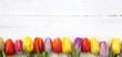 canvas print picture - Tulpen auf Holz
