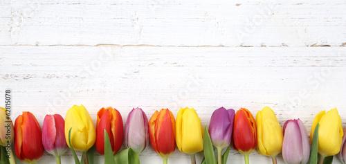 canvas print picture Tulpen auf Holz