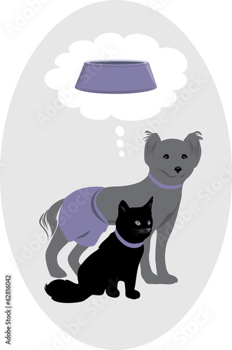 Dog and cat dreaming about a delicious pet food