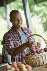 A farm stand with fresh organic vegetables and fruit.  A man sorting beetroot in a basket.
