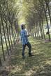 A man walking down an avenue of trees, looking upwards.