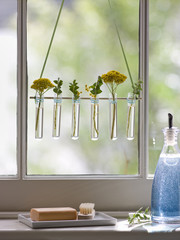 A row of small glass vases hanging in a window.