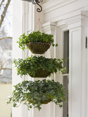 A hanging basket with three tiers of green plants with a cascading habit on a house porch.