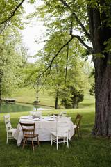 An elegant table setting, under a large tree in the garden.