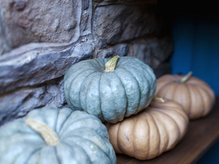 A group of pumpkins or gourds in storage for use in the winter in a cool place.