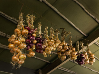 Onions strung up from the ceiling for storage, in a cool place.