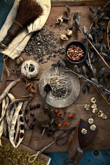 Collecting and storing the fruits of the garden for winter, dried seeds, herbs, nuts and vegetables. Seeds for the garden.