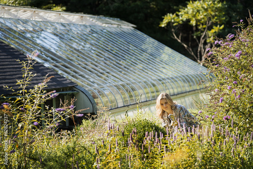 Organic Farming, A young woman working in a bed of tall flowering plants. Greenhouse.