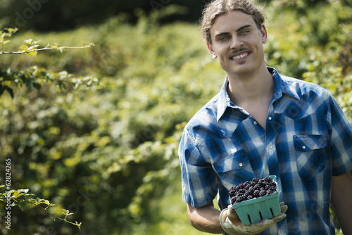 Organic Farming. A young man holding out a punnet of picked fruit, blackberries.