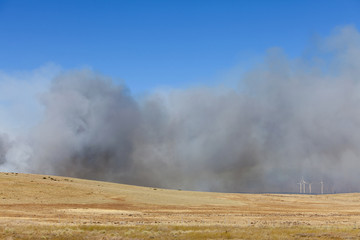 A large forest fire near Ellensburg in Kittitas county, Washington state, USA.
