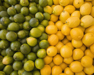Lemons and limes, citrus fruits, divided into two piles, contrasting in colour.