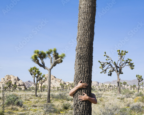 Man hugging Joshua Tree