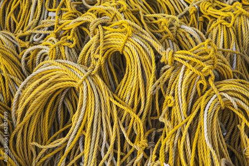Rows of coiled yellow rope used for commercial fishing Oysterville USA