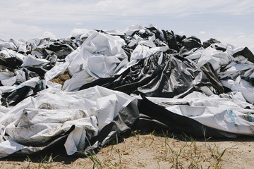 Black and white discarded plastic bags, used for covering bales of hay