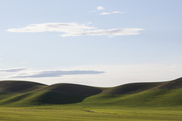 Rolling green hills and farmed land at dusk.